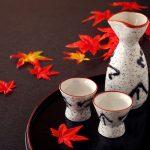 日本酒 紅葉酒 秋の味覚 猪口と徳利