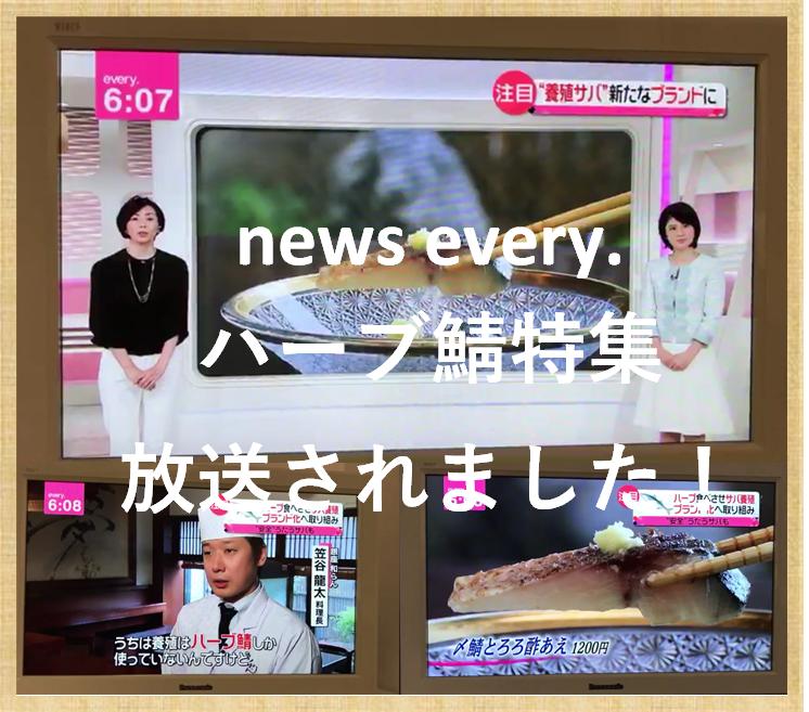 news every. ハーブ鯖特集